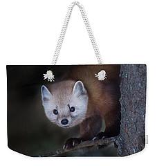 American Marten Weekender Tote Bag