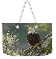Bald Eagle Weekender Tote Bag by Doug Herr