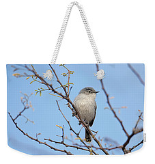 Black-tailed Gnatcatcher Weekender Tote Bag