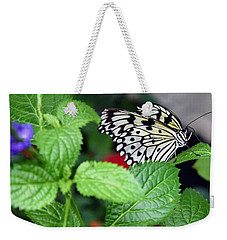 Paper Kite Butterfly No. 3 Weekender Tote Bag by Sandy Taylor