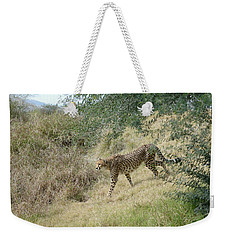 Weekender Tote Bag featuring the photograph Descent by Fraida Gutovich