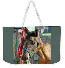 Horse Weekender Tote Bag by Savannah Gibbs