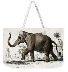 Indian Elephant, Endangered Species Weekender Tote Bag