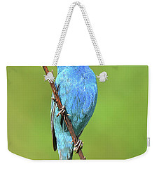 Indigo Bunting Weekender Tote Bag by Alan Lenk