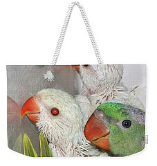 Weekender Tote Bag featuring the photograph 3 Is Company 4 Is A Crowd by Debbie Stahre