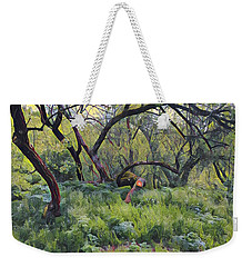 Morning Walk Trees Weekender Tote Bag