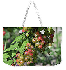Weekender Tote Bag featuring the photograph My Currant by Elvira Ladocki