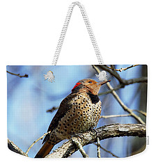 Weekender Tote Bag featuring the photograph Northern Flicker Woodpecker by Robert L Jackson