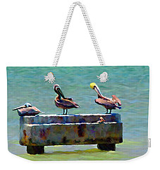 3 Pelicans Weekender Tote Bag by David  Van Hulst