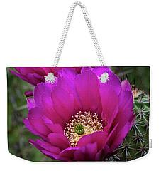 Weekender Tote Bag featuring the photograph Pink Hedgehog Cactus  by Saija Lehtonen