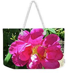Weekender Tote Bag featuring the photograph Pink Rose by Stephanie Moore