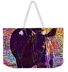 Weekender Tote Bag featuring the digital art Rhino Africa Namibia Nature Dry  by PixBreak Art