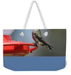 Sitting Pretty Weekender Tote Bag by Fraida Gutovich
