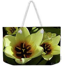 Tulip Lights #4 Weekender Tote Bag by Kim Tran