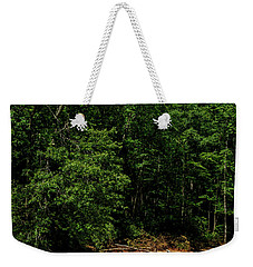Weekender Tote Bag featuring the photograph Williams River After The Flood by Thomas R Fletcher