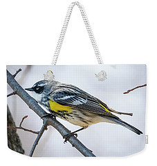 Weekender Tote Bag featuring the photograph Yellow-rumped Warbler  by Ricky L Jones
