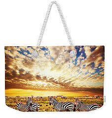 Zebras Herd On African Savanna At Sunset. Weekender Tote Bag
