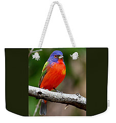 Painted Bunting Weekender Tote Bag