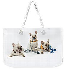 3010.064 Therapet Weekender Tote Bag