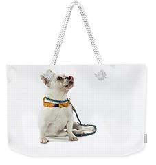 3010.067 Therapet Weekender Tote Bag