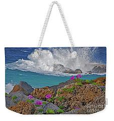 34- Beauty And Power Weekender Tote Bag