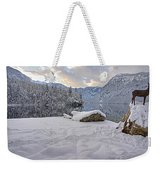 Weekender Tote Bag featuring the photograph Alpine Winter Reflections by Ian Middleton