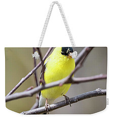 Weekender Tote Bag featuring the photograph American Goldfinch  by Ricky L Jones