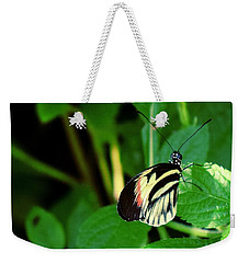 Butterfly No. 4 Weekender Tote Bag by Sandy Taylor
