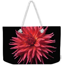 Dahlia 'wyn's King Salmon' Weekender Tote Bag