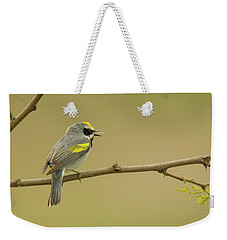Golden-winged Warbler Weekender Tote Bag by Alan Lenk