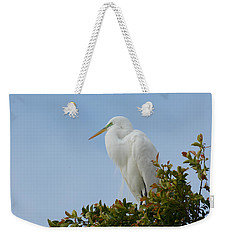 Weekender Tote Bag featuring the photograph Poised by Fraida Gutovich