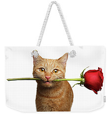 Portrait Of Ginger Cat Brought Rose As A Gift Weekender Tote Bag by Sergey Taran
