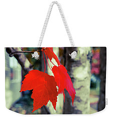 Weekender Tote Bag featuring the photograph Red by Ronda Broatch