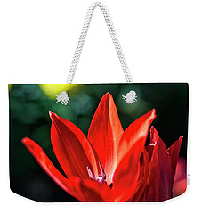 Spring Garden Weekender Tote Bag by Miguel Winterpacht