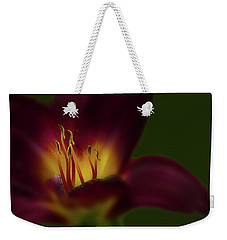Weekender Tote Bag featuring the photograph 4479 by Peter Holme III