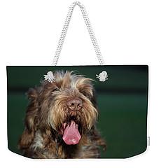 Brown Roan Italian Spinone Dog Head Shot Weekender Tote Bag