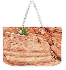 Weekender Tote Bag featuring the photograph Colorful Wash In Valley Of Fire by Ray Mathis