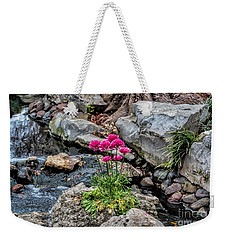 Weekender Tote Bag featuring the photograph Dallas Arboretum by Diana Mary Sharpton