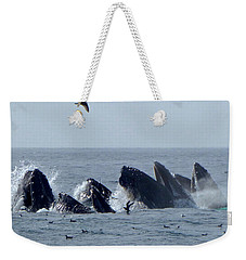 5 Humpbacks Lunge Feeding  Weekender Tote Bag
