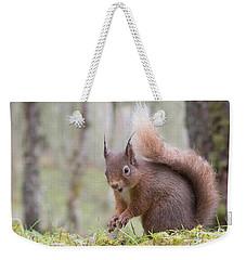 Red Squirrel - Scottish Highlands #8 Weekender Tote Bag