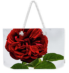 Weekender Tote Bag featuring the photograph Rose Beauty by Shirley Mitchell
