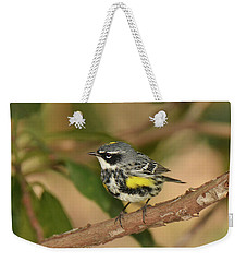 Yellow-rumped Warbler Weekender Tote Bag by Alan Lenk