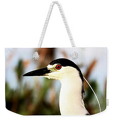 Black Crowned Night Heron Weekender Tote Bag