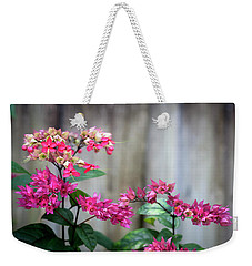 Bleeding Heart Flowers Clerodendrum Painted  Weekender Tote Bag