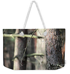 Weekender Tote Bag featuring the photograph Pine Tree by Dariusz Gudowicz