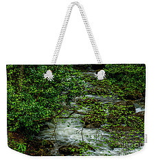 Weekender Tote Bag featuring the photograph Kens Creek Cranberry Wilderness by Thomas R Fletcher