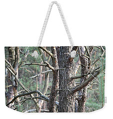Weekender Tote Bag featuring the photograph Pine Forest by Dariusz Gudowicz