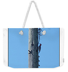 #866x Woodpecker Weekender Tote Bag