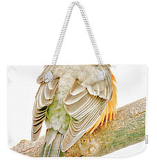American Robin Male, Animal Portrait Weekender Tote Bag