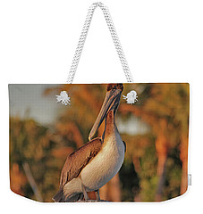 Weekender Tote Bag featuring the photograph 9- Brown Pelican by Joseph Keane